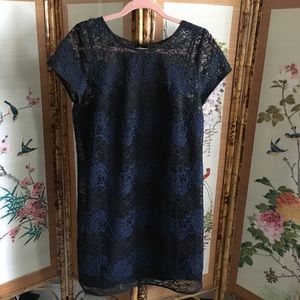 Ann Taylor Loft lace cap sleeve midi shift dress